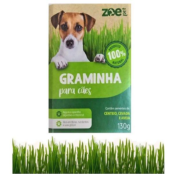 Graminha para Gatos - 100% Natural - Para Cães
