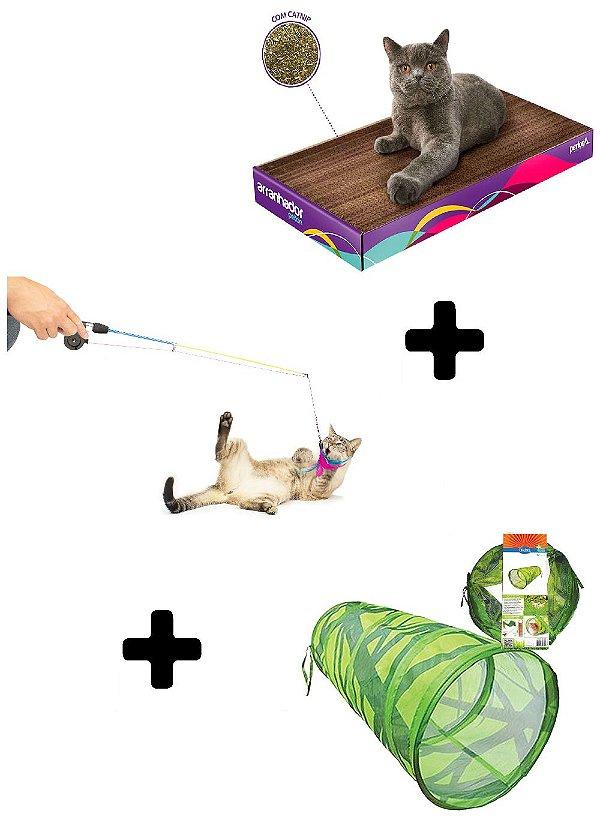 Combo Diversão Garantida para Gatos