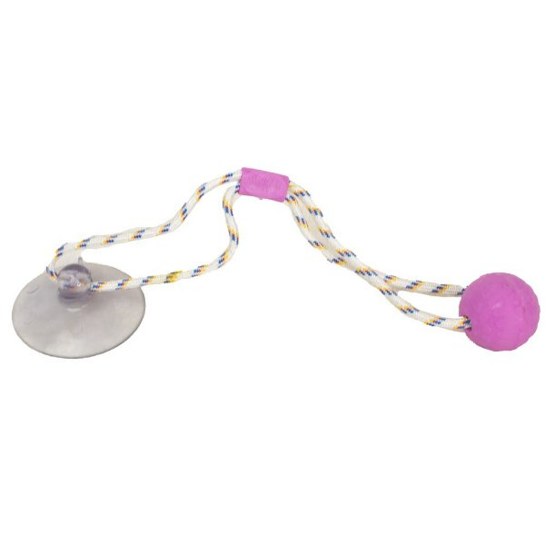 Brinquedo Push Ball Pet - Rosa