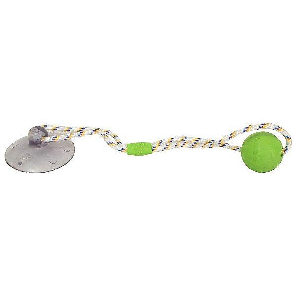 Brinquedo Push Ball Pet - Verde