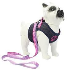 Coleira pra cachorro com ajuste para peito e esticador