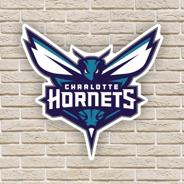 Quadro Decorativo Charlotte Hornets Nba Basquete