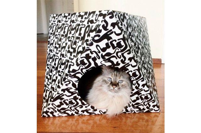 PET GAMES Octa Cat