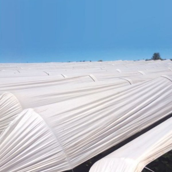Túnel Leitoso 1,80m x 500m Ref 75 Material 100% Virgem