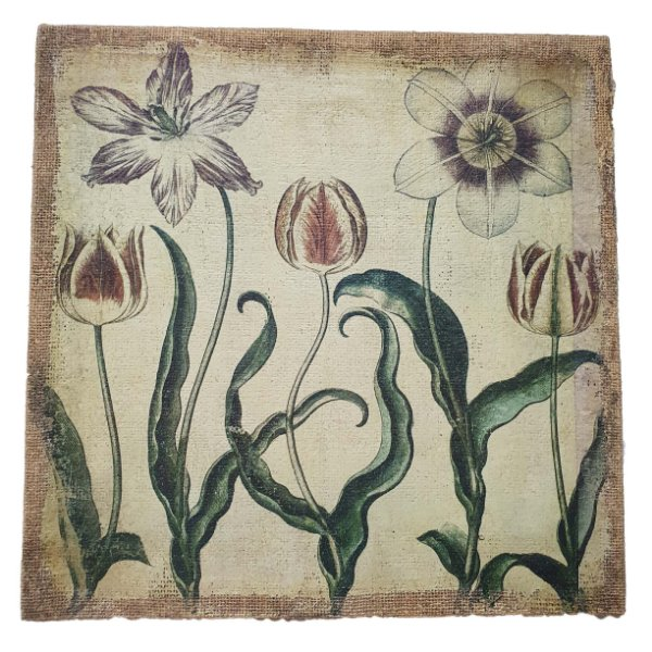Gravura 'Flores' Artista Desconhecido