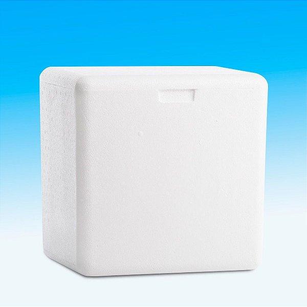 Caixa de Isopor 3 Litros – Goldpac