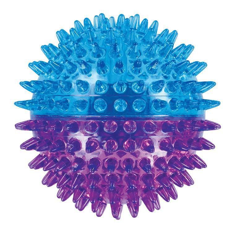 Brinquedo de Cachorro Bola Espinho Dual Color Grande Jambo Azul Roxa