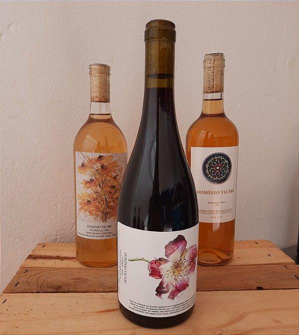 Vinho Gamay Domínio Vicari 750ml