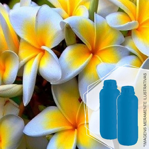 432 - Essência Desinfetante Jasmin Floral 1/100
