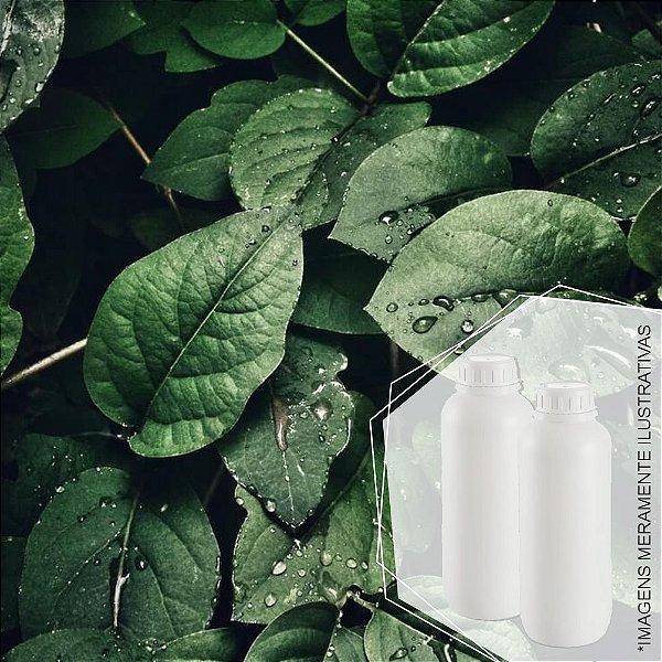 5279 - Essência Desinfetante Herbal 1/80