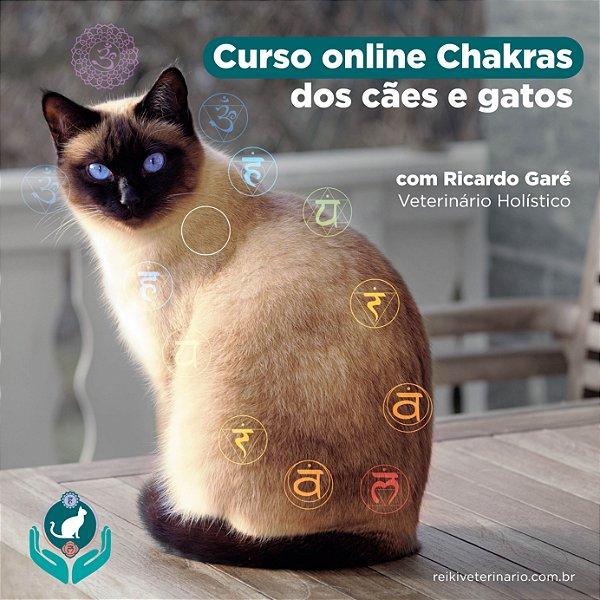 Curso online de Chakra dos Cães e Gatos criado por Reiki Veterinário. Clique na imagem