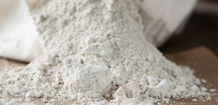 Terra de Diatomáceas 100% Orgânica Natural Micronizada 80 gramas - Alto Rendimento 4g. preventivo ou 10g. para eliminar pragas - NCM 25120000 - Harina Silicosa Fosil - Farinha Silicosa Fossil - Dióxido de Sílica - kieselguhr - Diatomito - Diatomea - 80g