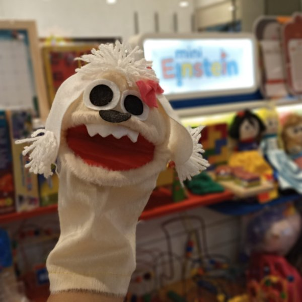 Fantoche Mini Einstein - poodle