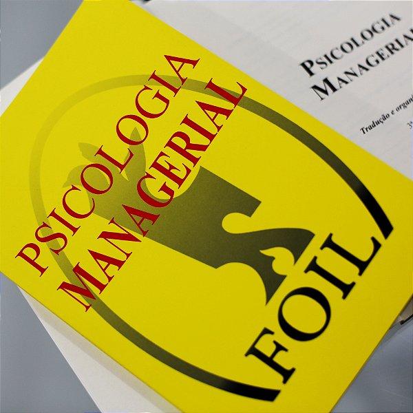Psicologia Managerial