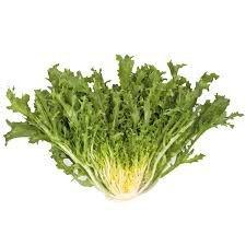 Chicoria Frise - Unidade