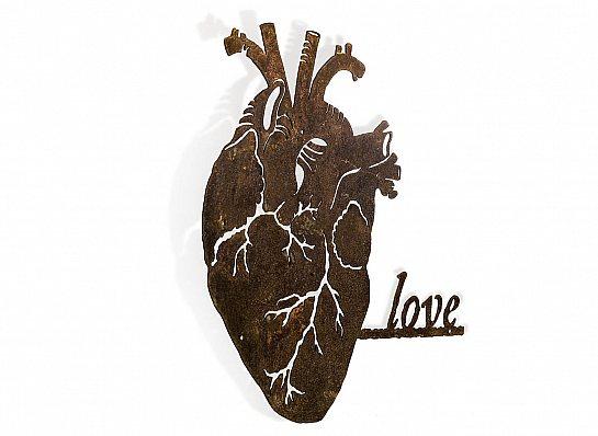 CORAÇÃO ANATOMIA LOVE