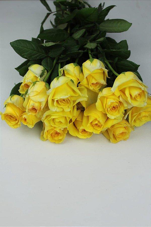 Rosa Amarela - 20 botões
