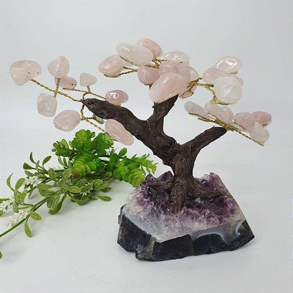 Árvore Quartzo Rosa com Base em Drusa de Ametista - 16cm | 876g
