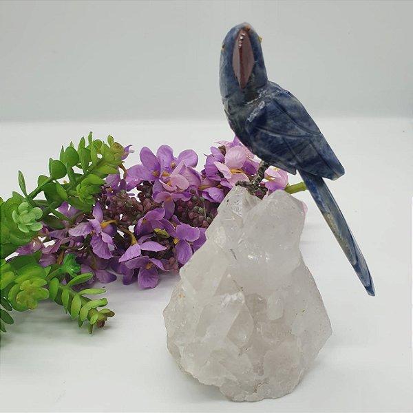 Pássaro em Sodalita com Base em Drusa de Quartzo Transparente de Excelente Qualidade | A14cm x L10cm x P14cm | P 390g