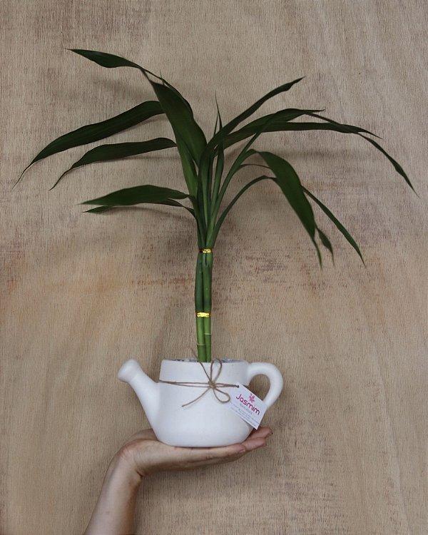 Bambu da Sorte Regador de cerâmica