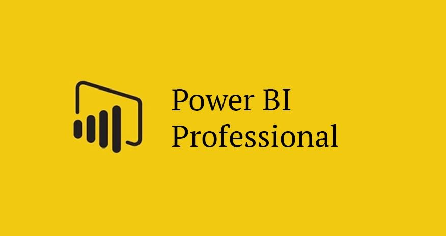 Microsoft Power BI Professional