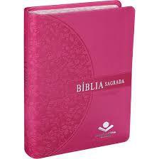Bíblia Sagrada Letra Grande Almeida Revista E Atualizada Sbb Rosa Com Beiradas Floridas