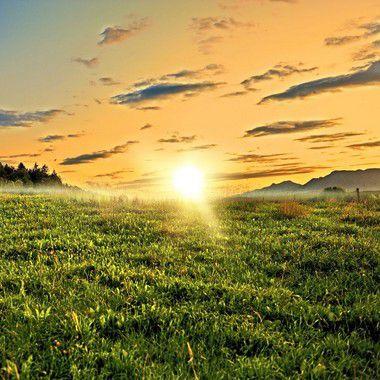 PERFUME PARA AMBIENTE - HOME SPRAY EKOMIST MORNING OF SPRING