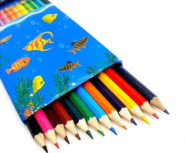 Caixa Com 12 Lápis De Cor - CX01 Azul
