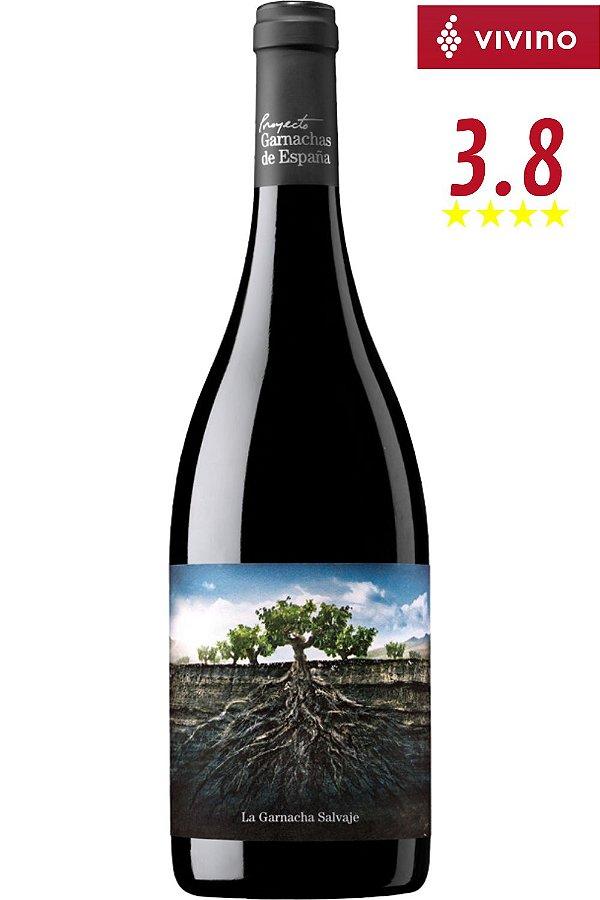 Vinho Projeto La Garnacha Salvaje Del Moncayo 750 ml