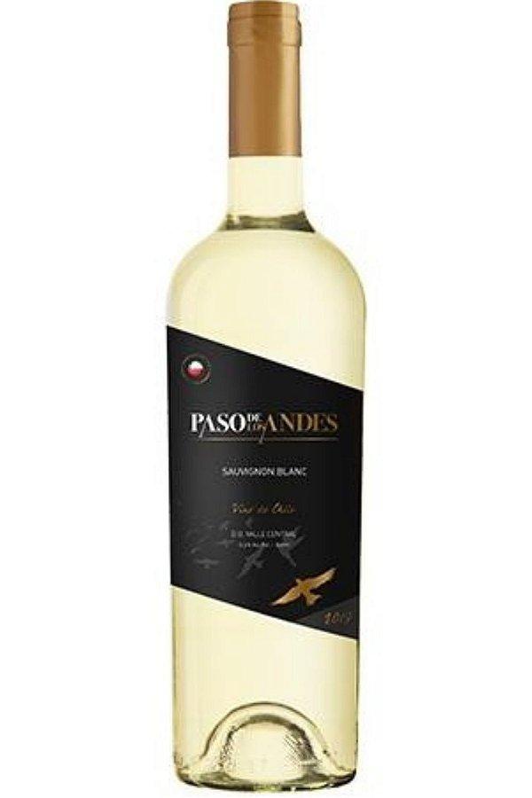 Vinho Paso De Los Andes Sauvignon Blanc 2019
