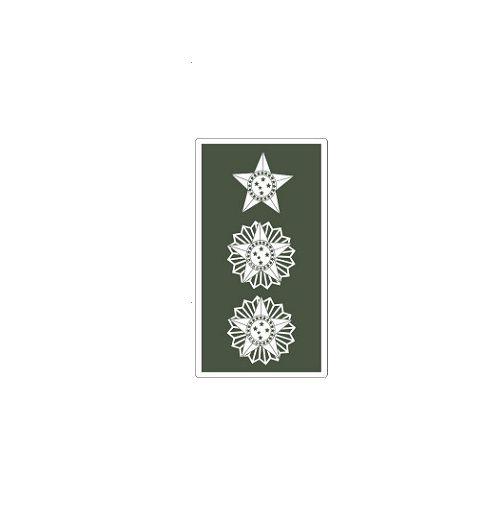 Distintivo de Tenente Coronel (Emborrachado)
