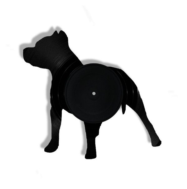 Vinil - Cachorro Pitbull