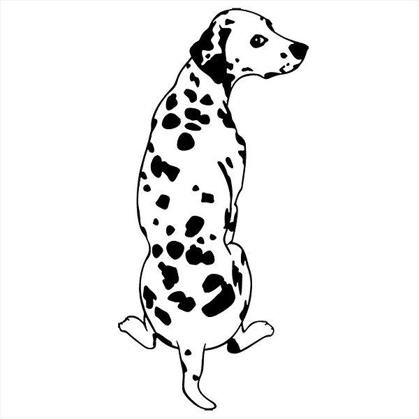 Adesivo - Cachorro Dalmata Pets