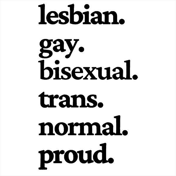 Adesivo - Lesbian Gay Bisexual Trans Normal Proud Pride Lgbt Sociedade