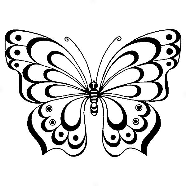 Adesivo - Borboleta Butterfly