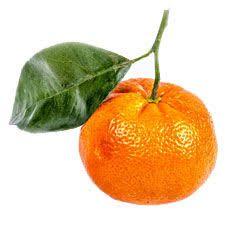 Mandarina verde Óleo