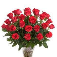 EBS/1755 Essência Rosas Vermelha