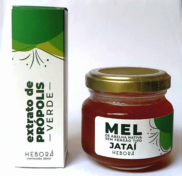 Conjunto Saúde - Mel de Jataí e Extrato de Própolis Verde