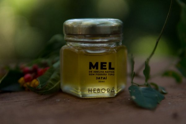 Mel de abelha Jataí 30mL