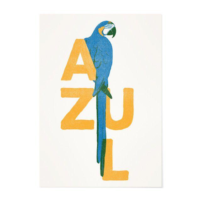 Poster A3 - Arara