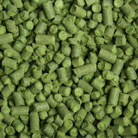 LÚPULO CHINOOK AGRÁRIA - 50 gramas
