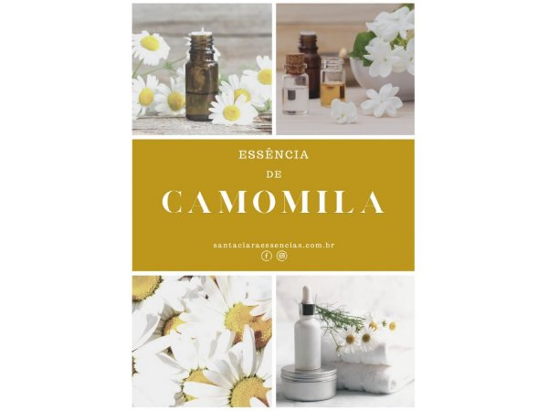 Essência Camomila