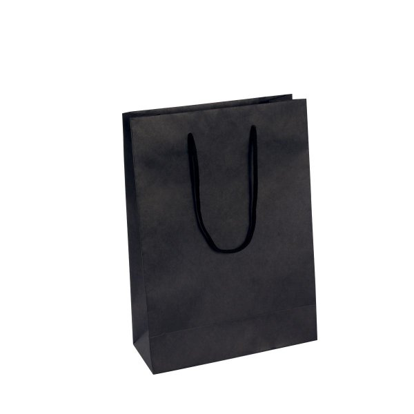 Sacola de papel colorida 22,2x29,5x9cm - preta