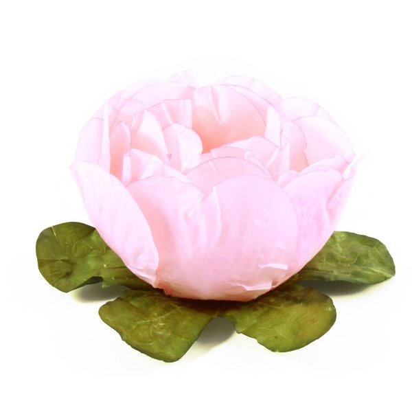 Forminhas para doces Bouganville Beauty - rosa seco