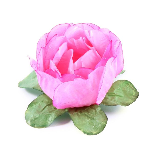 Forminhas para doces Bouganville Beauty - rose