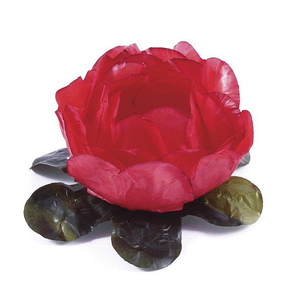 Forminhas para doces Bouganville Beauty - vermelha claro