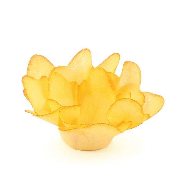 Forminhas para doces F138 - mostarda