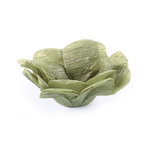 Forminhas para doces R82 - pistache