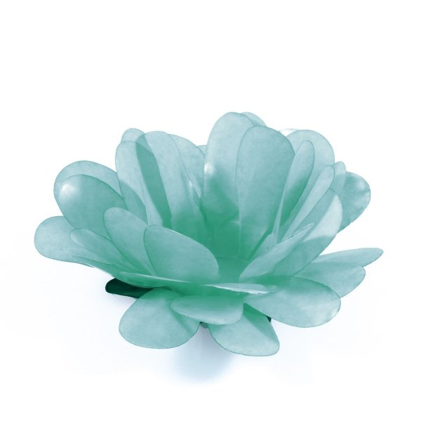 Forminhas para doces Bombom Margarida - verde água