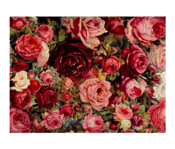 Jogo Americano (Kit 4 Unidades) Nerderia e Lojaria rosas colorido